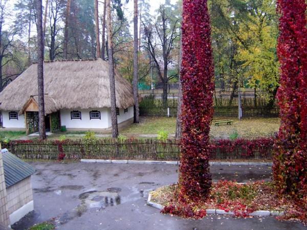 Санаторий «Славутич» в Пуще Водице